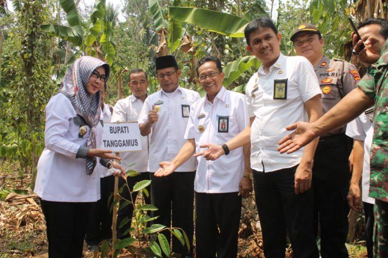 Pemkab Tanggamus Kembangkan Sektor Pertanian dan Perikanan Secara Inovatif
