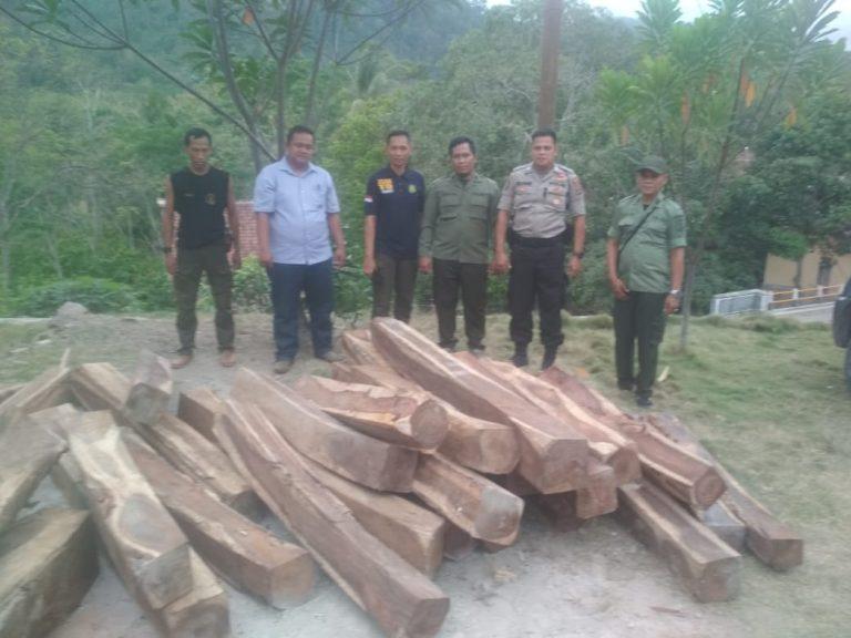 Warga Temukan Puluhan Potong Kayu Sonokeling di Dusun Batu Kibau Pekon Ampai