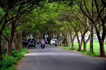 Anggota DPRD Lamteng ini Ajak Bacakada Jaga Kelestarian Lingkungan